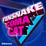 track4-tensnake