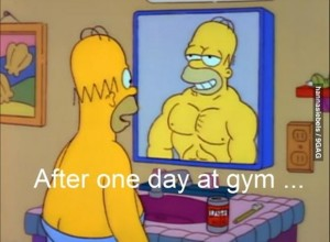 one-day-at-the-gym